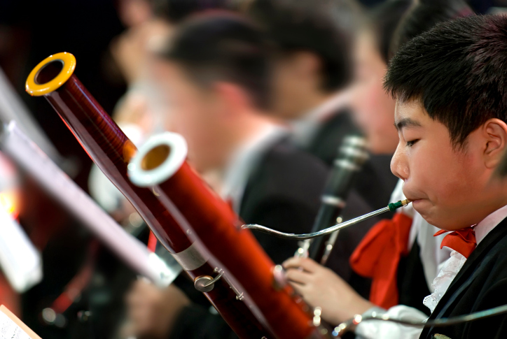 Choosing the Right Bassoon: A Guide